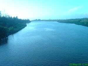 Sungai Serut mengalir dengan tenang menuju muara (foto diambil dari atas jembatan)